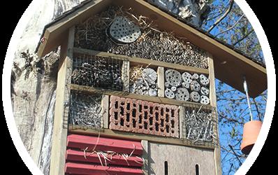 Insektenhotel basteln